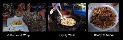 12-wasp